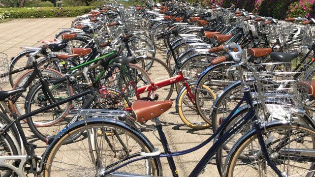 自転車「ロココ」愛媛の学生に爆発的人気らしい。