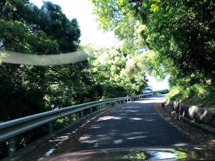 興居島 山の中