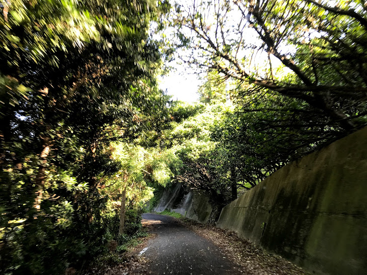 興居島 山道