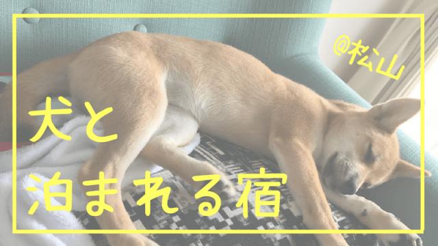 犬と 泊まれる宿 松山