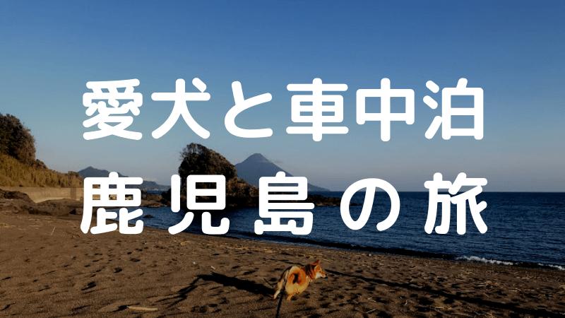 愛犬と車中泊鹿児島の旅